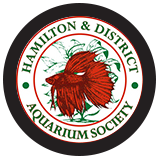 Hamilton & District Aquarium Society